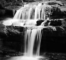 Leura Falls by Tamara Dandy