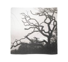 Trees Scarf