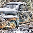 Rusty Ruin by billium