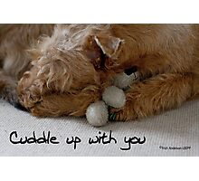Cuddle up with you Photographic Print