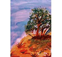Beautiful trees on slope, watercolor Photographic Print