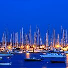 Oak Bay Marina by Anne McKinnell