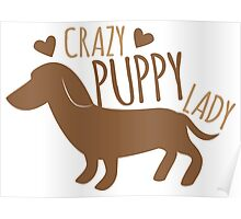 Crazy puppy dog lady Poster
