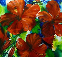 Hibiscus Show by Ciska