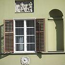 Green Window Budapest by Danielle  La Valle