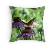 A Butterfly, A Bee And A Coneflower Throw Pillow
