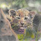 Here Kitty Kitty by George Yesthal