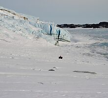Beware: Cracks in the Road - Sorsdel Glacier, Antarctica by southphotos