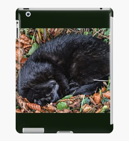 Guess who l found under the Hedgerow.. iPad Case/Skin