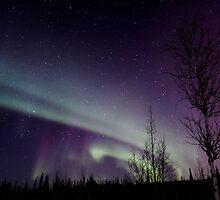 Aurora Borealis 2986 by May-Le Ng