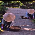 Garden workers, Golden Pavilion, Kyoto, Japan by johnrf