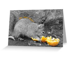 Tastey Oranges Greeting Card