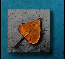 Leaf by zdepe