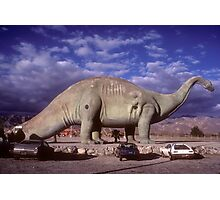 The Roadside Attraction Photographic Print