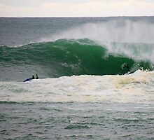 the swell. bicheno, tasmania by tim buckley | bodhiimages