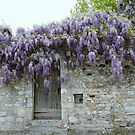 Viviers France by Susan Moss