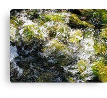 Rushing stream, Dublin Ireland Canvas Print