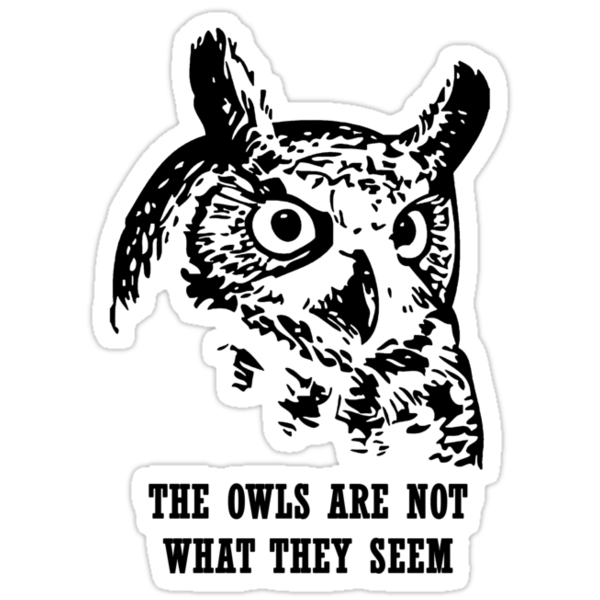 THE OWLS ARE NOT WHAT THEY SEEM by SallyDiamonds