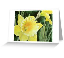 Daffodil in the Sunshine Greeting Card