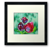 Wine-colored Tulips Framed Print