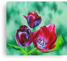 Wine-colored Tulips Canvas Print