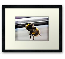 I gotta get out of this place Framed Print