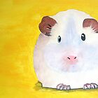 Guinee Pig by Darren Stein