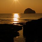 Cornwall: Golden Sparkles by Rob Parsons