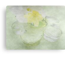 Translucent Daffodils, and Glass Daisy Canvas Print