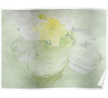 Translucent Daffodils, and Glass Daisy Poster