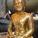 Gold Leaf Buddha by Brendan Buckley