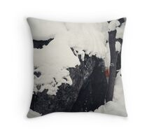 Hidden Landmark Throw Pillow