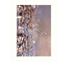 Frost fence Art Print