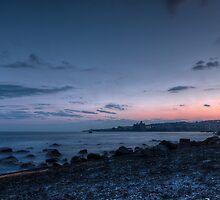 Blue hour seascape with rocks by Andrea Rapisarda