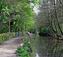 Cromford Canal, Tree Lined Walk by Rod Johnson