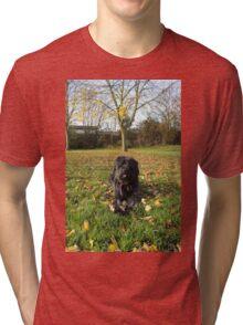 Autumn Portrait Tri-blend T-Shirt
