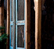 Swinging Saloon Doors by phil decocco