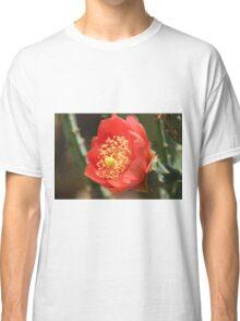 Cactus flower close-up Classic T-Shirt