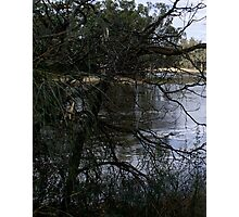 River Murray  Photographic Print