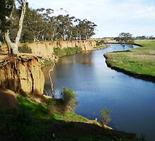 Werribee River and the Tree - Werribee, Vic. Australia by EdsMum