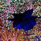 Blue Daffodil by WeeZie