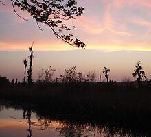 LEMON SLICE SUNSET by May Lattanzio