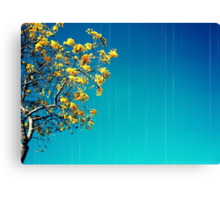 when will i see you again  Canvas Print
