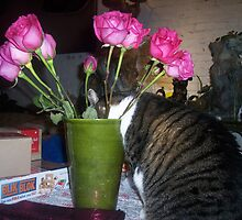 Who put smelly flowers in my drinking cup? by Nella Khanis