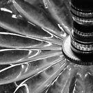 Spirals by MaryLynn