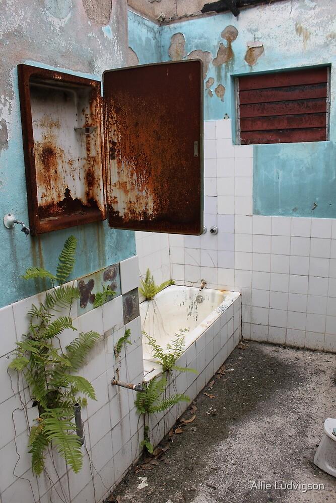 """Abandoned Bathroom - Mandeville, Jamaica"" by Allie ..."