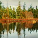 Reflections Of Winters End by Terrie Taylor
