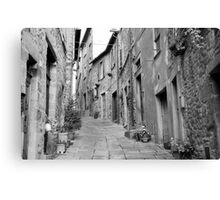 up this street Canvas Print