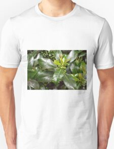 Holly Berries and Leaves T-Shirt