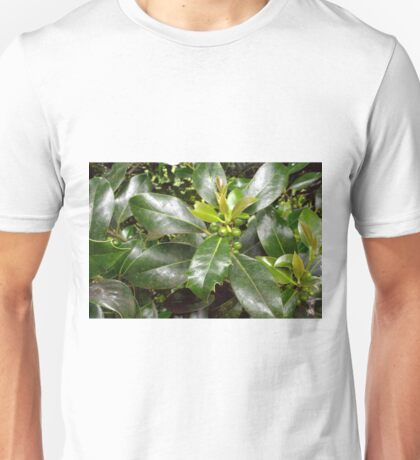Holly Berries and Leaves Unisex T-Shirt